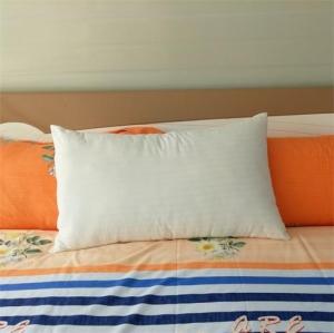 贝比佳全棉枕芯酒店枕芯决明子养生枕泰国乳胶枕图片